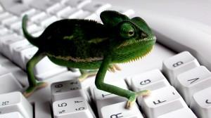 cameleon_keyboard